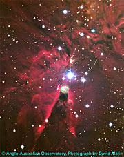 Cone Nebula