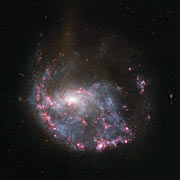 Hubble view of NGC 922