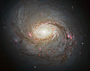 Hubble image of Messier 77