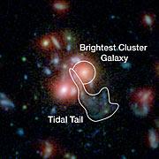 En eksplosion af nye stjerner i galaksehoben SpARCS1049