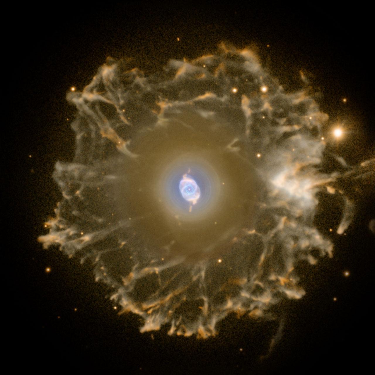 The Cat's Eye Nebula imaged with the Nordic Optical Telescope