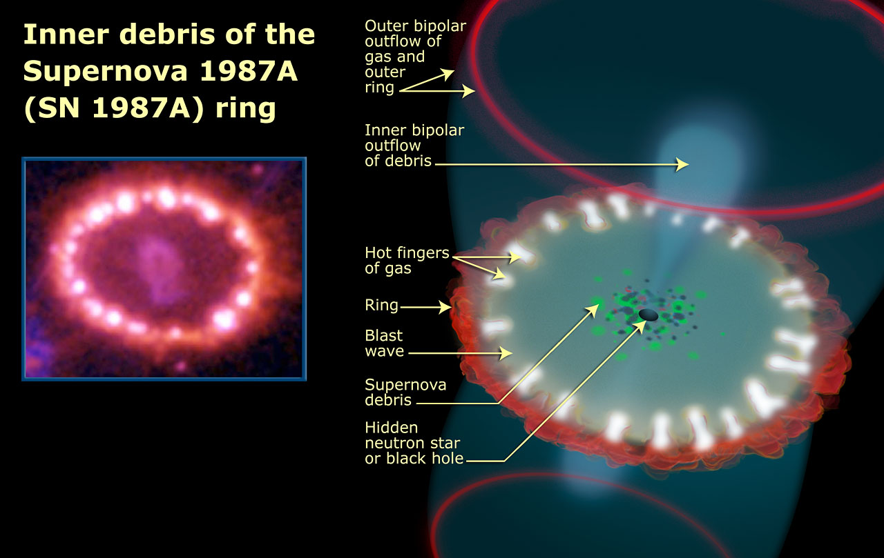 Supernova 1987a inner debris ring - Courtesy NASA & spacetelescope.com