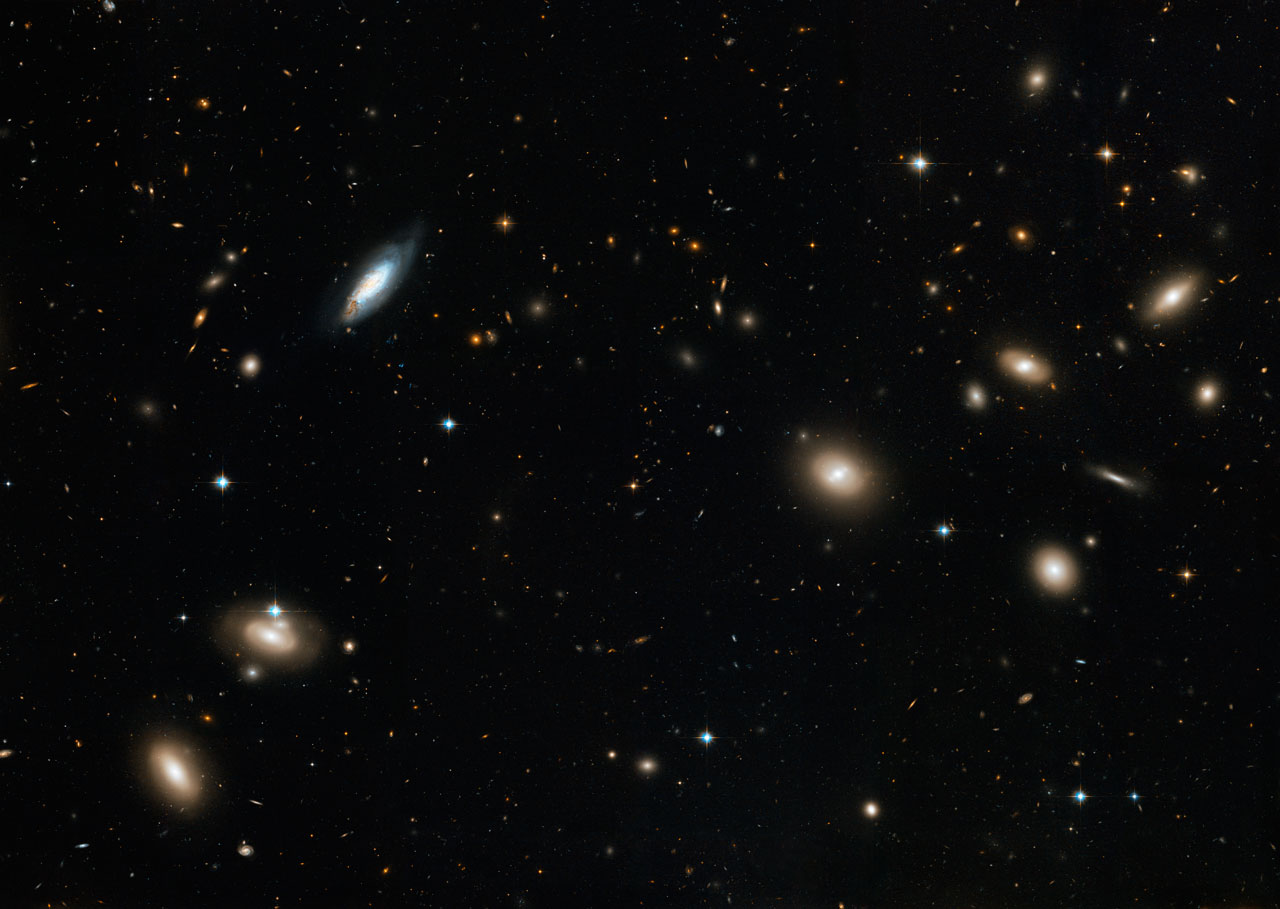 The Coma Galaxy Cluster as seen by Hubble