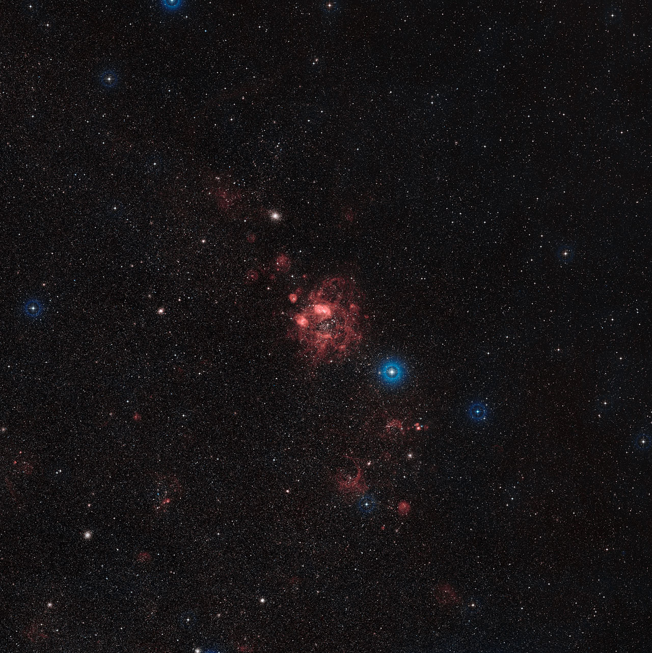 Overview of the Large Magellanic Cloud (ground-based image)