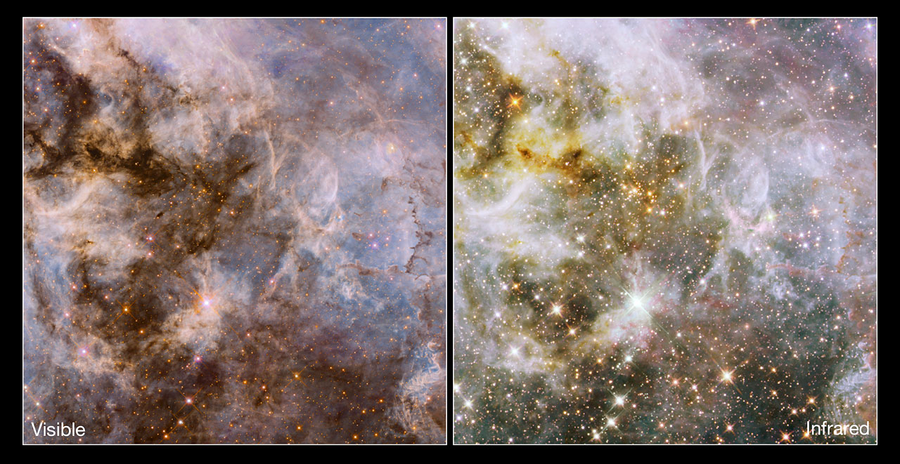 Comparing optical and infrared Hubble views of the Tarantula Nebula