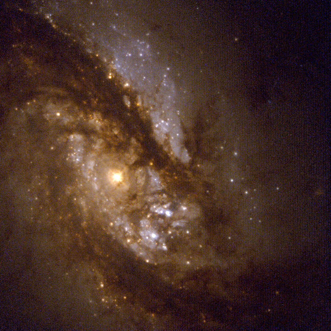 Starry Bulges Yield Secrets to Galaxy Growth (Hubble WFPC2 View)