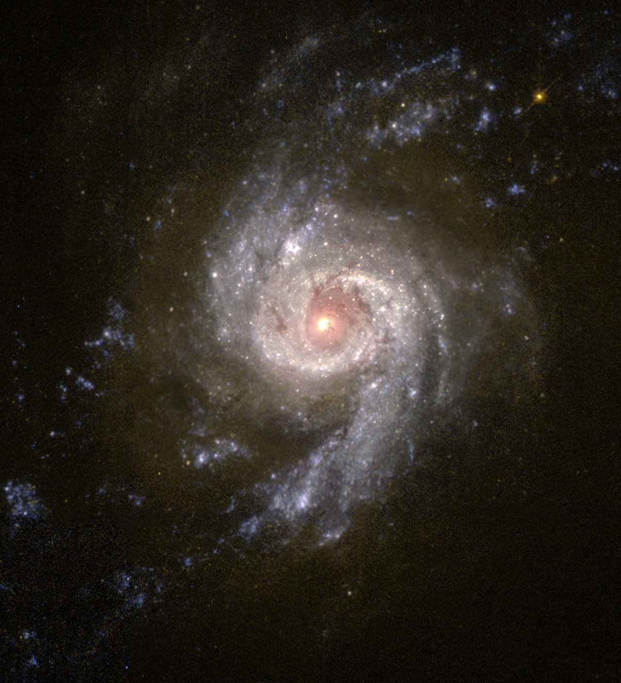 Baby Boom in Galaxy NGC 3310