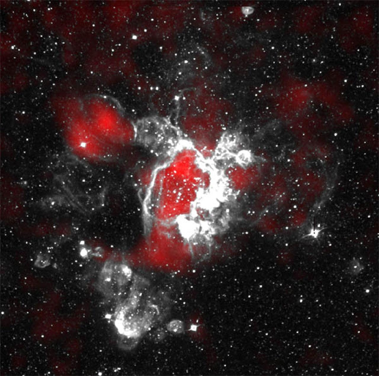 Gaseous Streamers Flutter in Stellar Breeze