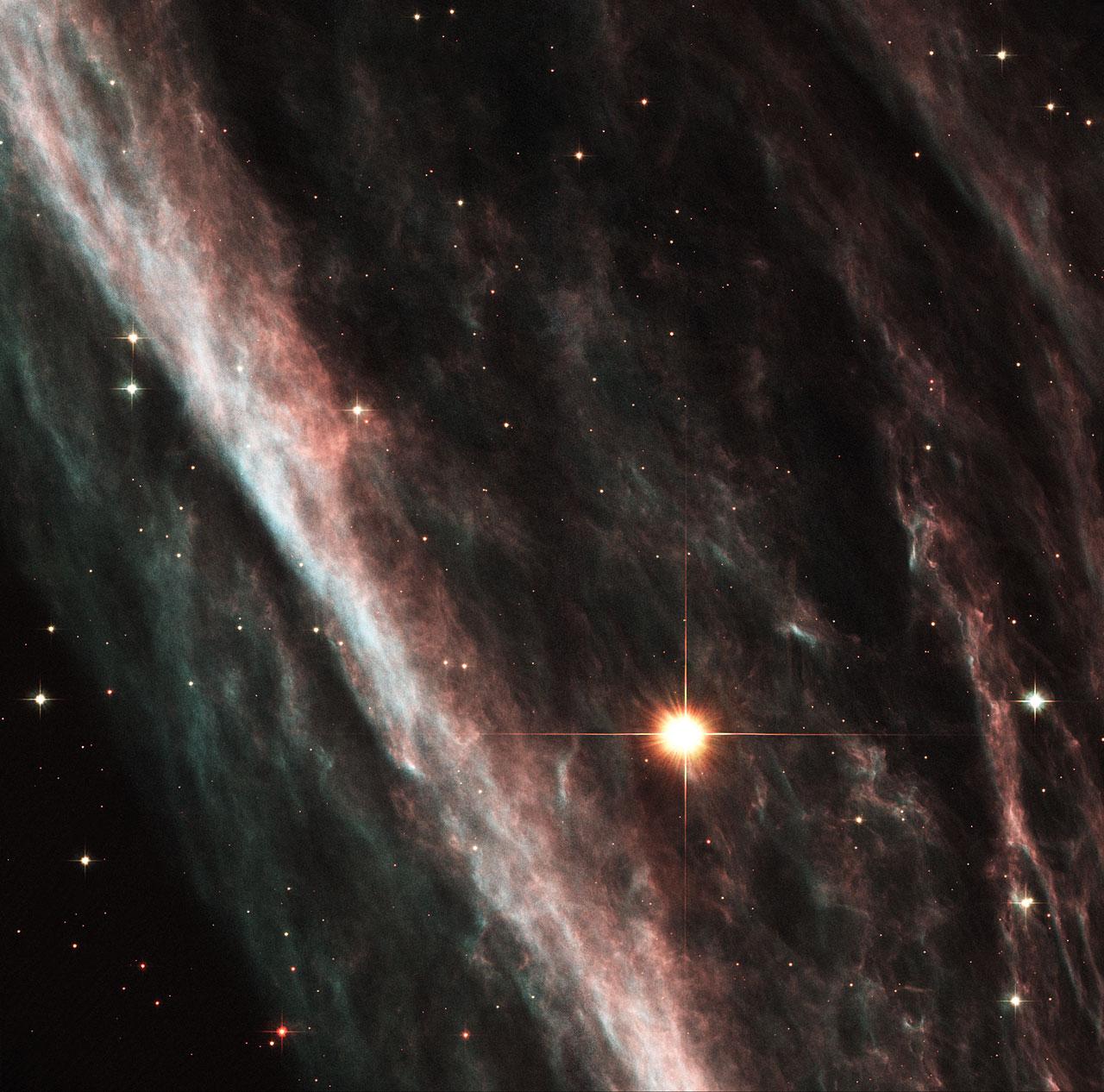 Supernova Shock Wave Paints Cosmic Portrait