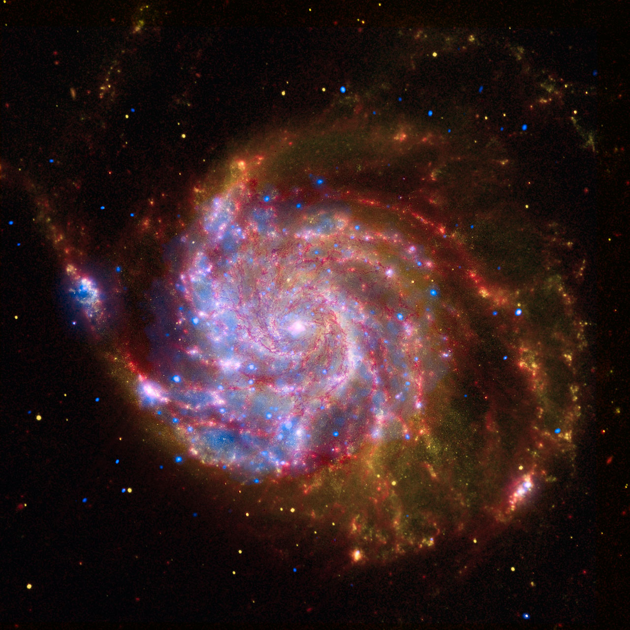 Spitzer-Hubble-Chandra Composite of M101