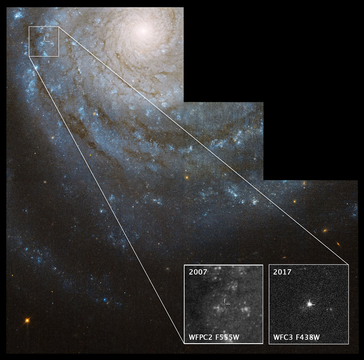Astronomers find a supernova's progenitor star in Hubble images