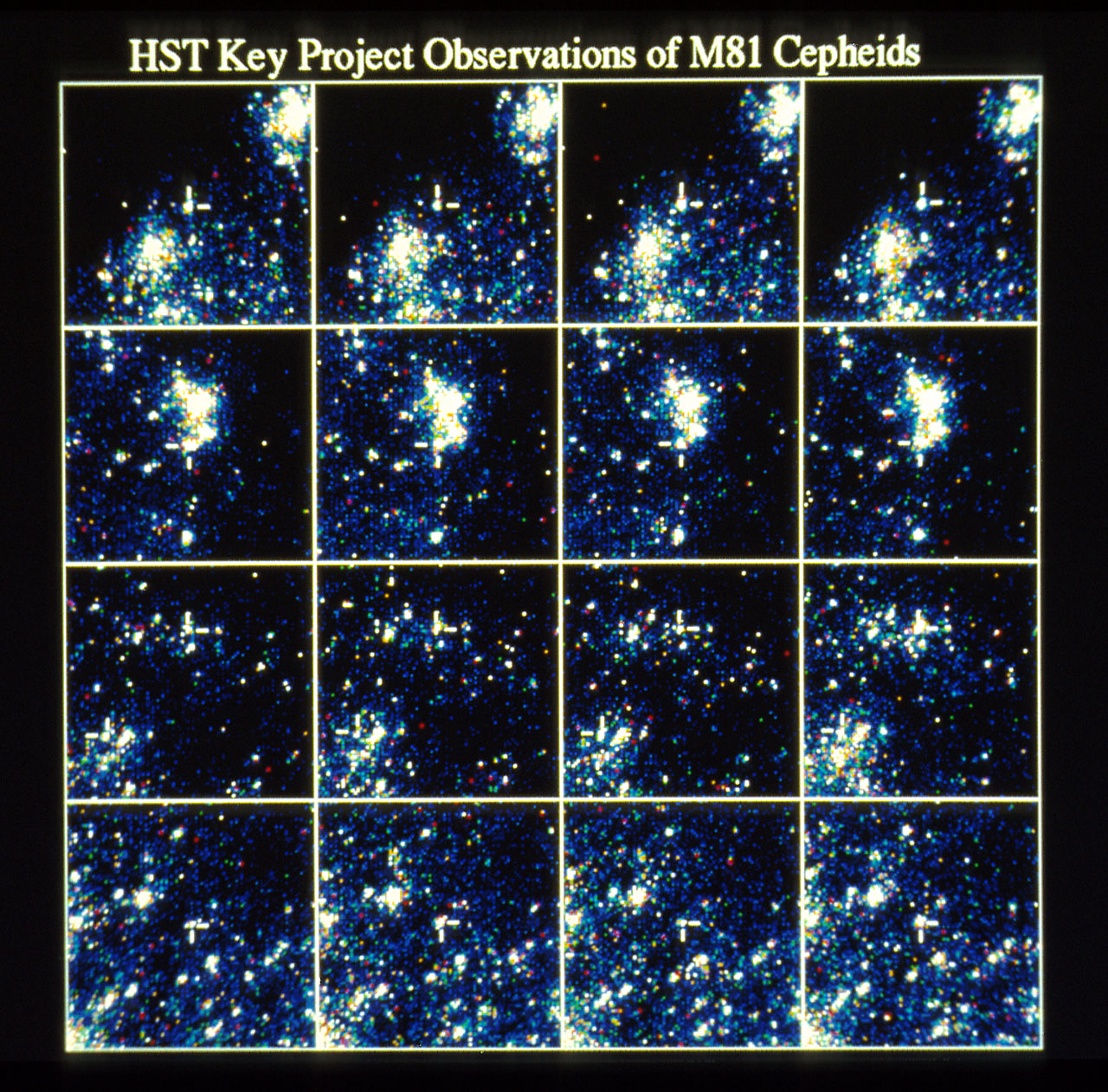 HST Key Project Observation of M81 Cepheids