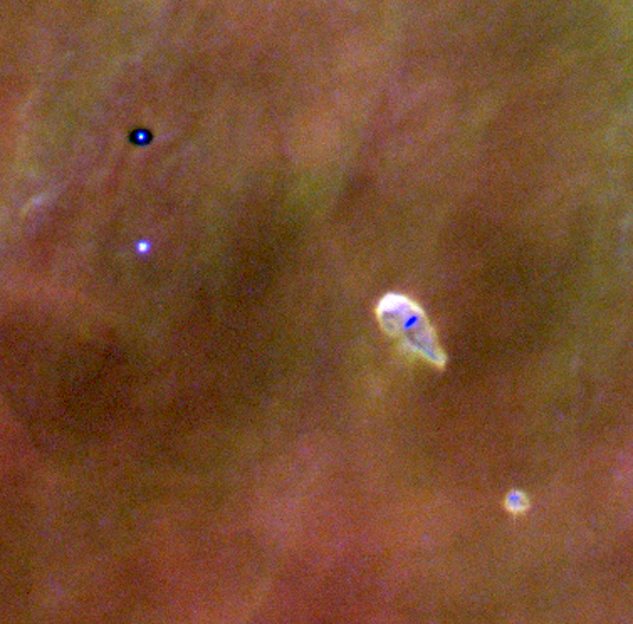 Proplyds in the Orion Nebula
