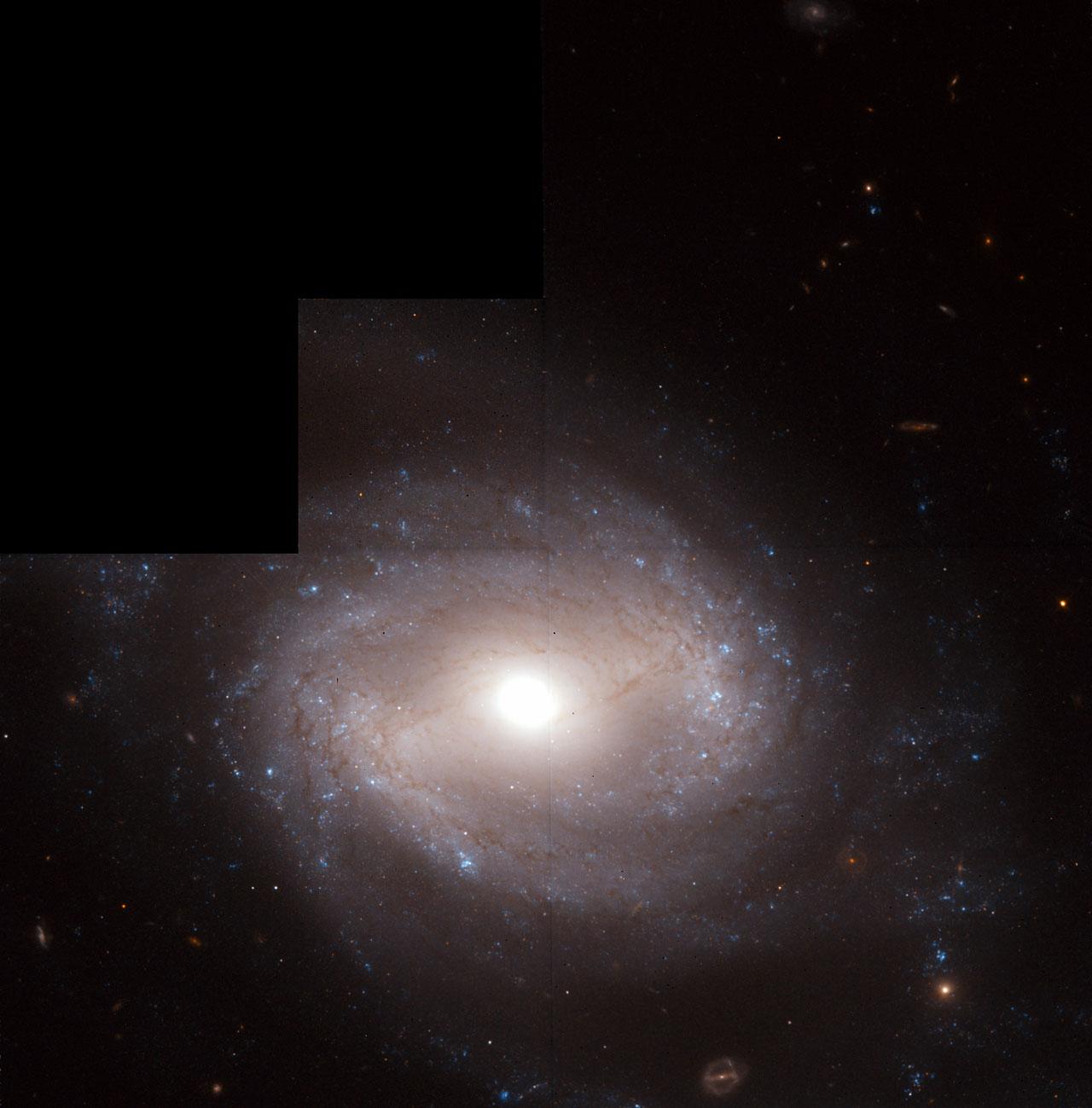 Distance Measurements to a Type-Ia Supernova-Bearing Galaxy