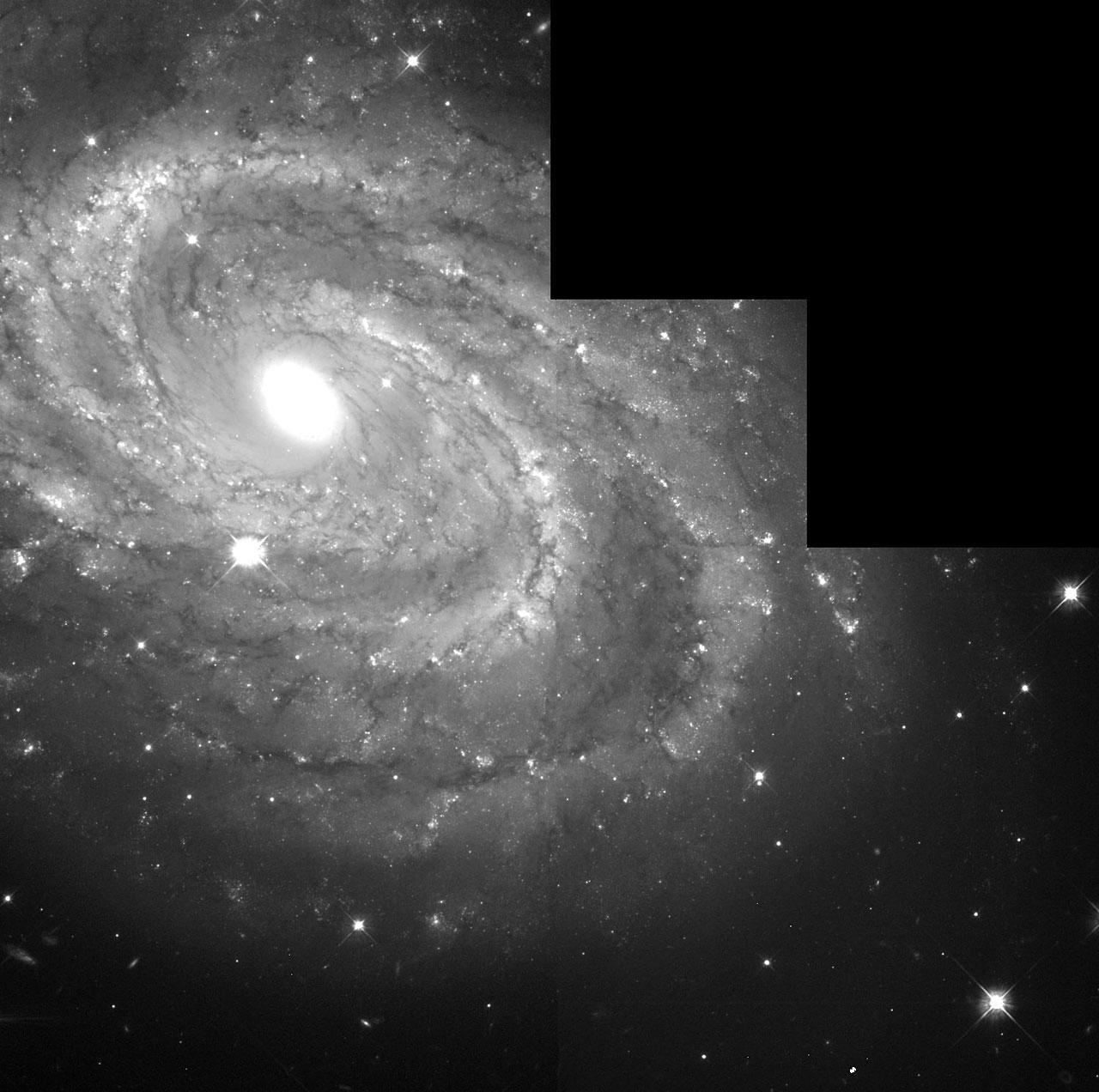 Full WFPC2 Field NGC 4603