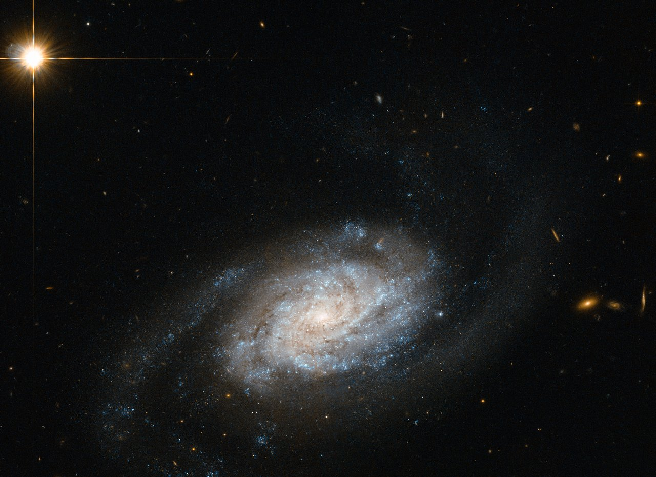 Galaxies spiralling around Leo