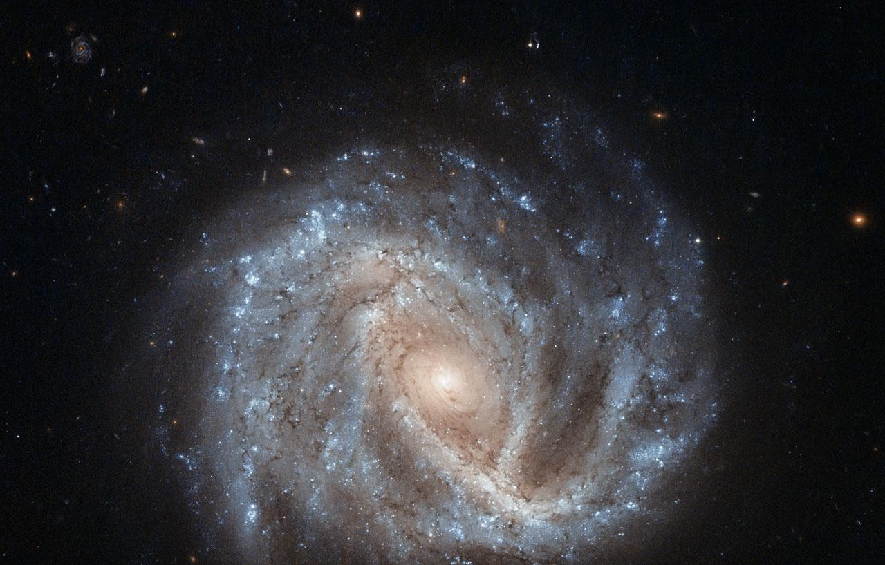 A curious supernova in NGC 2441