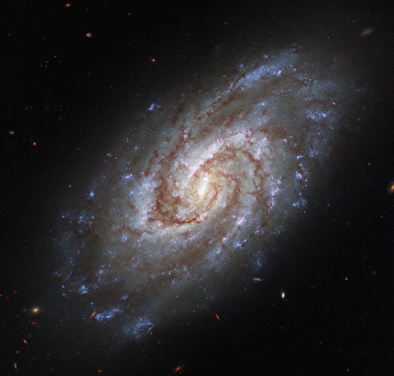 Portrait of a Swirling Galaxy