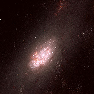 Star Clusters and Circumnuclear Ring in the Centre of NGC 2903 (NICMOS)