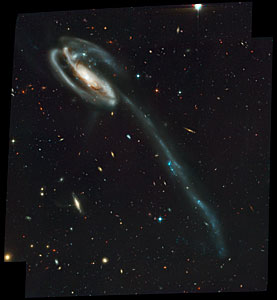 UGC 10214 (ACS Full Field Image)