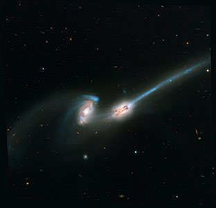 The Mice/NGC 4676 (ACS Full Field Image)