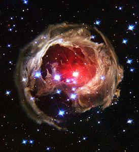 V838 Monocerotis revisited: Space phenomenon imitates art