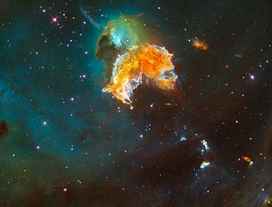 Supernova remnant menagerie