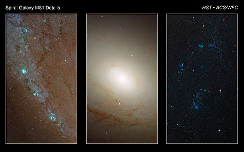Detailed images of spiral galaxy M81