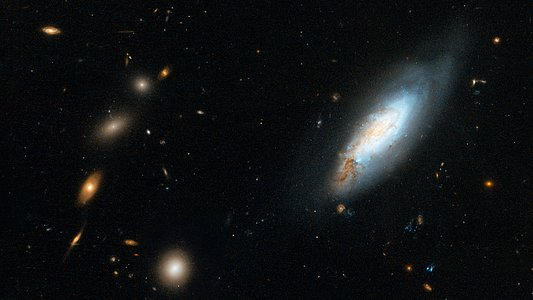 Coma Galaxy Cluster (Detail 1)