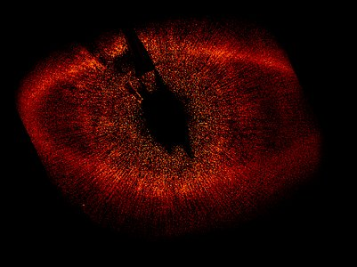 HST ACS/HRC wide view of Fomalhaut system