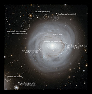 Annotated view of NGC 4921