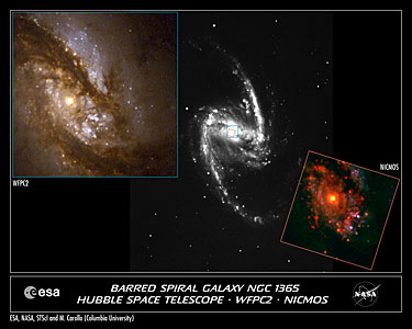 Central Bulges of Spiral Galaxies (Hubble and Ground-Based Views)