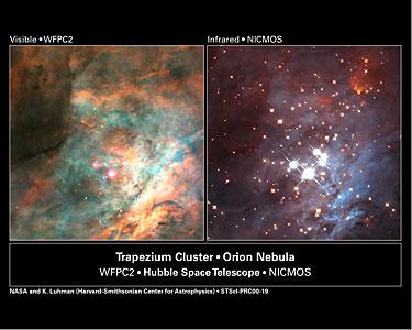Trapezium Cluster in the Orion Nebula