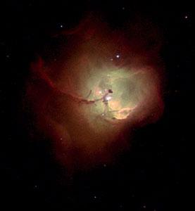 Nebula N 81