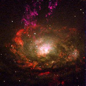 Active Galaxy Circinus