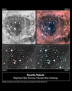 The New Improved Guide Star Catalogue II