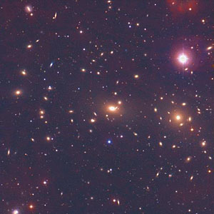 A Cluster of Galaxies  - Coma Cluster [NOAO]