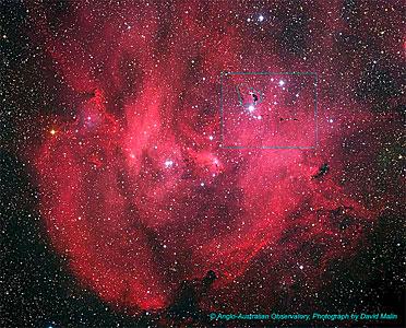 IC 2944 (ground-based image)
