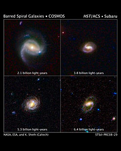 Hubble Surveys Barred Spiral Galaxies