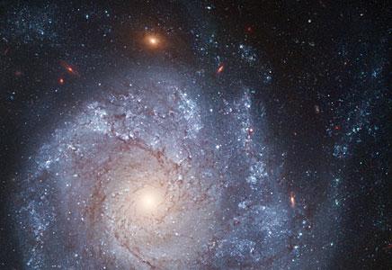 Spiral galaxy NGC 1309