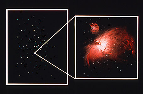 Orion Nebula Montage