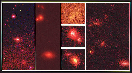 Hubble Space Telescope Deep-Sky Survey Reveals Embryonic Galaxies