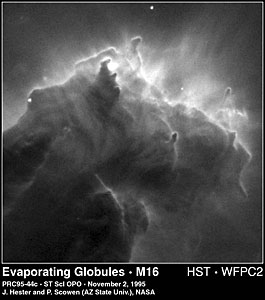 Evaporating Globules in M16