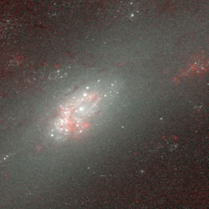 Hubble's Infrared Galaxy Gallery. A View of NGC 2903
