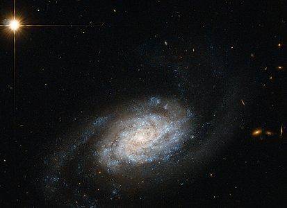 Galaxies spiralling around Leo