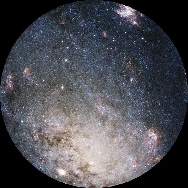 NGC 2403, SN 2004dj