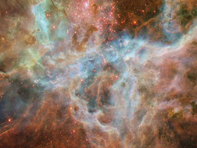 Zooming on the Tarantula Nebula