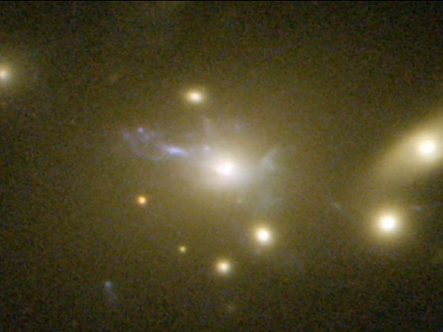 Zooming on the cooling flow in Abell 2667