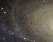 Spiral Galaxy M81 Details 4