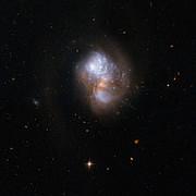 IC 1623